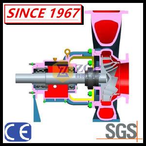 Einzelnes Stadiums-horizontale chemischer Prozess-Pumpe mit Cer-Bescheinigung