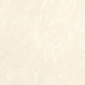 Tuiles Polished de porcelaine - tuiles solubles de sel (E36035)