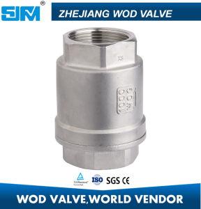 DN20 Metal de acero inoxidable 304 Válvula de retención de elevación de la primavera sentado
