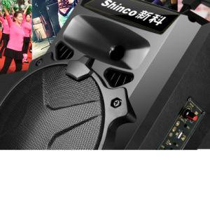 Shinco Laufkatze der nachladbaren BerufsBluetooth drahtlosen Multimedia 10 '' im Freienlautsprecher