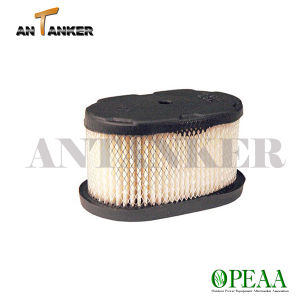 Filtro Parts-Air Motor de B&S 12U800