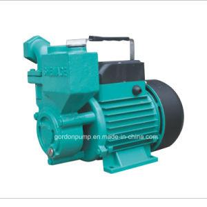 Inländische elektrische kupferner Draht-selbstansaugende Zusatzwasser-Pumpe mit Messingantreiber