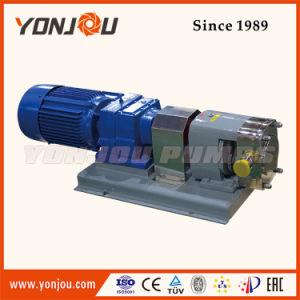 Pompa sanitaria del rotore dell'acciaio inossidabile