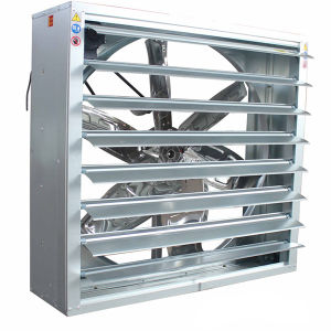 Bangchi Highquality Drop Hammer Exhaust Fan per Poultry House