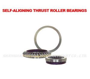 Autoalineador rodamientos de rodillos de empuje (29200)