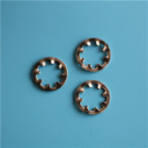 J6797DIN M22 dent interne en acier inoxydable de la rondelle de blocage