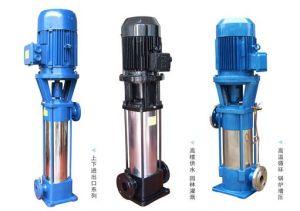 L'acciaio inossidabile una pompa sommergibile da 1 pollice 3/4HP con Ce ha approvato