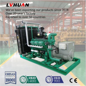 セリウムSupport Electricity Power 250kw Biogas Generator Set