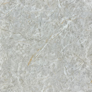 het Marmer van de Manier van 800*800mm kijkt Volledig Lichaam verglaasde de Opgepoetste Tegels van de Vloer van het Porselein (3-YT88112)