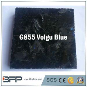 ウクライナVolguの青い花こう岩の建築材料の特定のサイズにカットされた床タイル