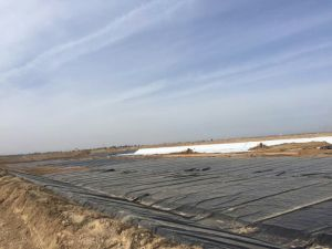 Fodera liscia e strutturata dell'HDPE dei fornitori 1mm della Cina di Geomembrane