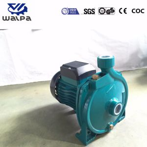 Kleine zentrifugale Wasser-Pumpe für Bewässerung mit bestem Preis