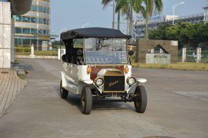 Sem escovas gracioso 5Kw Royal Passeios Veículo de passageiros