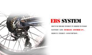 Fantas BMX 36V250W 20inches Gebirgselektrisches Motorrad