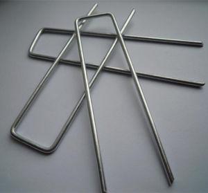 泥炭の釘または景色Staple/SOD Pinか草Pin
