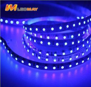 3527 SMD RGB+W UL CE RoHS Poupança energia Strip LED de luz