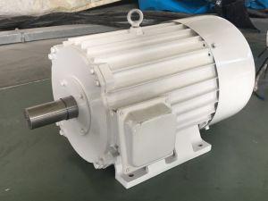 FF-75kw/150rpm/AC400V de Permanente Generator van de Magneet (PMG/PMA/Hydro)