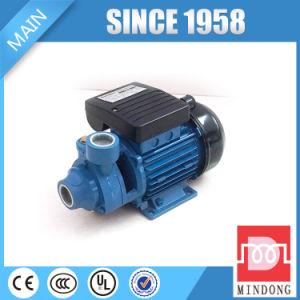 Pompa ad acqua elettrica nazionale di vortice dell'asta cilindrica dell'acciaio inossidabile Pm16 piccola