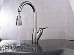 L'acciaio inossidabile di vendita calda americana estrae il rubinetto della cucina (AB119)
