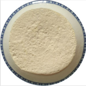 Pungente allergene della polvere dell'aglio disidratato forte aroma liberamente