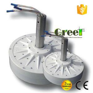 2kw CA trifásicos disco Corless generador de imanes permanentes