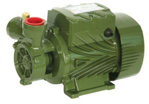 Aprovado pela CE de Ferro Fundido periférica da Bomba de Água (DB125)