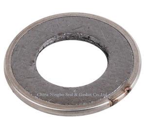 La Empaquetadura de anillo de grafito puro ampliado