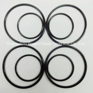 Hoogwaardige FKM/Viton 90 O-ring voor Sealing