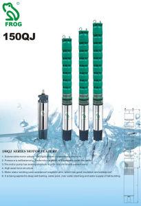 Deep Well/Submersible Pump