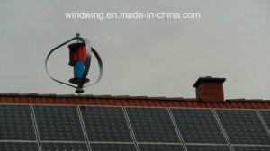 세륨 증명서를 가진 바람 발전기 그리고 태양 전지판