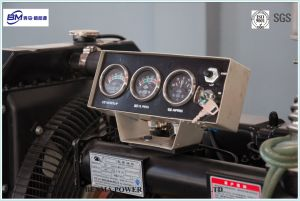 De milieuvriendelijke Diesel die Reeks van de Generator door Weichai Engine wordt aangedreven voerde Alternator in