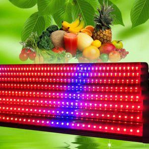 La pianta di T8 18W 4FT LED coltiva il tubo per vegetativo e Flowering