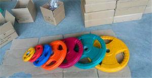 올림픽 둥근 색깔 고무 입히는 무게 격판덮개