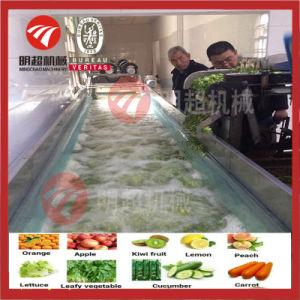 野生の野菜洗濯機のフルーツのクリーニング装置ライン