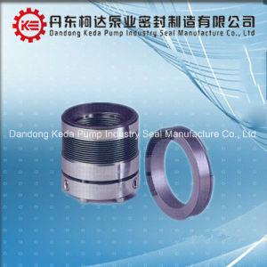 Welle Spring Mechanical Seal für Water Pump