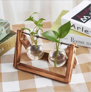 Стеклянная ваза гидропоники для домашнего офиса оформление