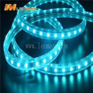 Cuerda de LED de luz 3 Flat Cable 220V