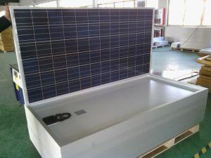 270W Polycrystalline Sonnenkollektor (DSP-270P)