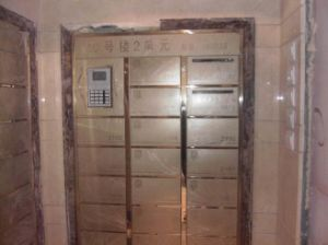 Serratura del Governo dell'armadio del pacchetto, serrature elettroniche, serratura del Governo di memoria