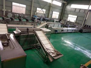 Garantie de durée de vie des croustilles de ligne de production des machines