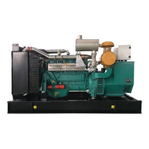 Servicio de Life-Long planta de energía de biomasa 100kw generador