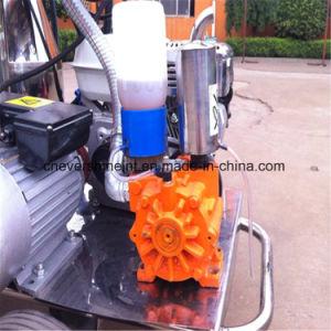 酪農場の搾り出す機械回転式真空ポンプ
