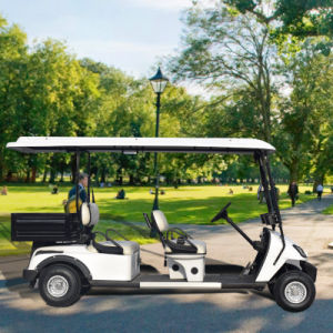 O OEM Imóveis utilizados carrinhos eléctrico 4 Seaters