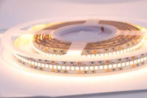 La striscia 120 LED/M di DC12V/24V 5m SMD 3014 LED raffredda striscia flessibile non impermeabile bianca bianca/calda dell'indicatore luminoso di striscia LED