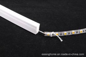 2018 indicatore luminoso di striscia rigido flessibile libero del silicone Ap302 della corda del tubo LED della flessione IP65/IP67 della curvatura esterna al neon chiara LED della decorazione LED
