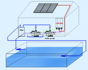 Saludos 2CV Solar Piscina Bomba con motor Brushles DC