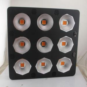 La hidroponía 700W 900W 1800W LED de luz de la Mazorca verduras crecen