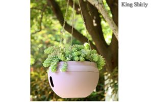 Bowl Self-Watering em forma de flor da plantadeira para pendurar Pot com base ventilada (L)