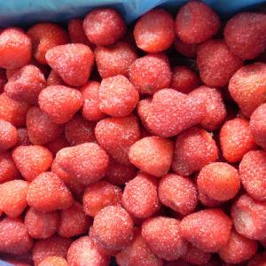 新しい穀物のIQFによってフリーズされるいちごおよび凍結するフルーツ