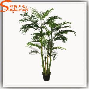 Bonsai artificial da árvore de Lacy Philodendron